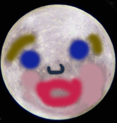 Marked up image of the moon to show the man-in-the-moon